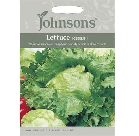 Benih Biji Bibit Bunga Phlox Import Uk Kemasan Repack 1 benih lettuce iceberg 4 1000 biji johnson seeds