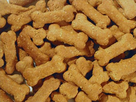 blue collar dog treats it s not magic it s bartering