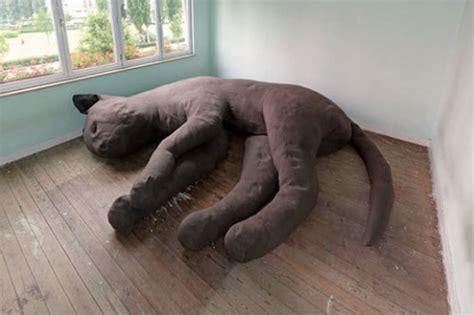 tappezzeria gatti sof 225 gato gigante limaonagua
