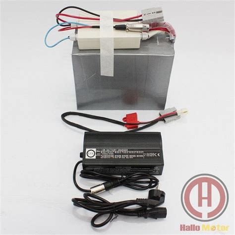 Sale 40a cheap sale 48v 30ah lifepo4 battery with 40a bms and 5a