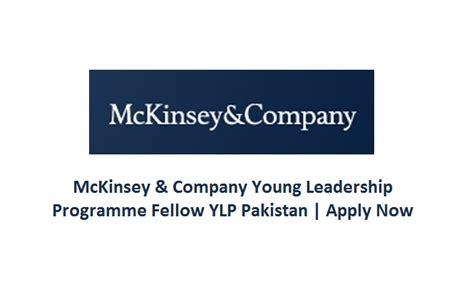 Pre Mba Internship Mckinsey by Mckinsey Company Leadership Programme Fellow Ylp