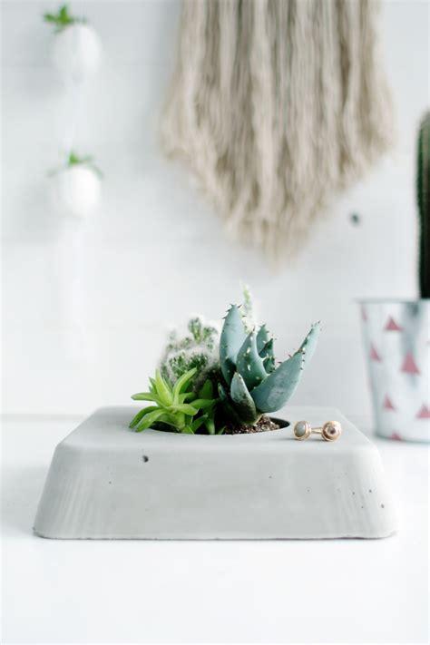 succulent planter diy diy concrete succulent planter