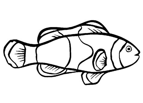 fish coloring pages print coloring pages kids