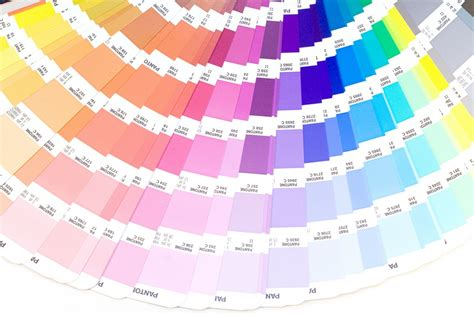 all colors in the world all the colors in the world my web value