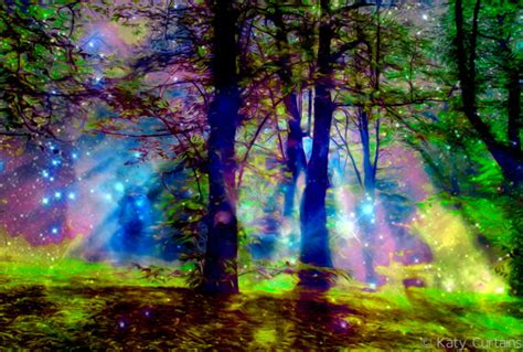 enchanted magical forests 0994355432 surreal fantasy art enchanted forest to die is