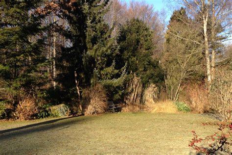 Garten Pflanzen Januar by Gartenarbeit Im Januar Und Februar Tipps F 252 R Den Winter