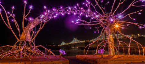 illuminate sf festival of light 2017 there s no other light quite like this one in