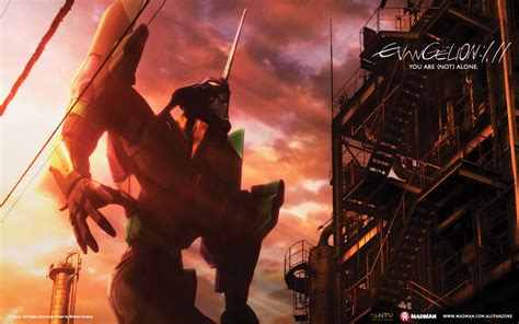 Ordinal Attack 11 by Search Results For Evangelion Madman Entertainment