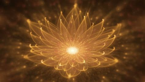 lotus water enlightenment or meditation and universe glowing orange lotus water enlightenment or