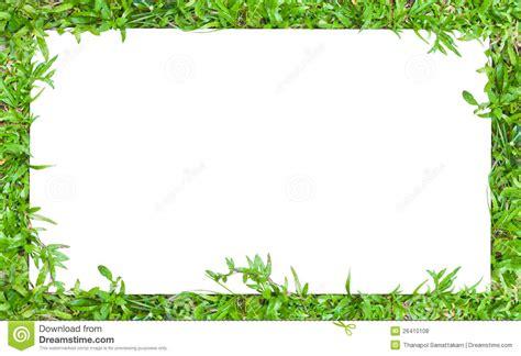 horizontal grass border frame stock photo image  floor