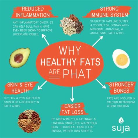 healthy fats and health 70 best images about the more you on