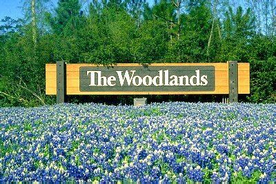 best 25 the woodlands tx ideas on