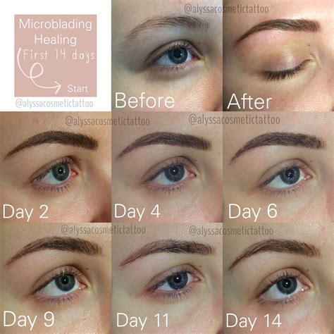14 days of the healing process after microblading