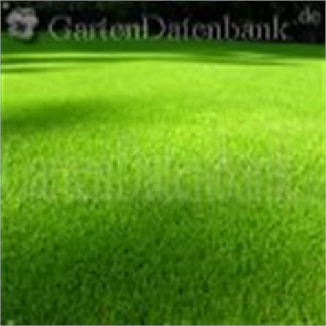 Pilze Im Rasen Schneiden by Quot Unkraut Quot Bek 228 Mpfen Bestimmen Identifizieren