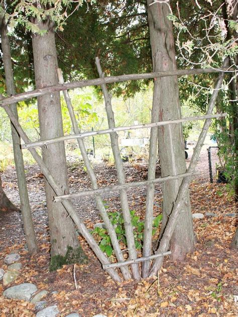 Trellis Gardening Ideas Trellis Made Of Branches Garden Craft Ideas Made From Wood Or Sticks Free Gardening Tips