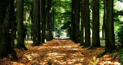 terme pavia e provincia terme di salice vacanze benessere in provincia di