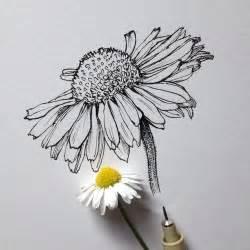 doodle flowers interpretation flower draw