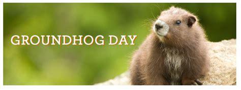 groundhog day america groundhog day archives kvc kansas