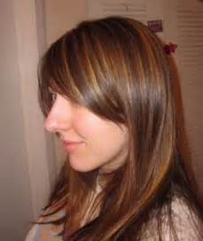 hair with low lights style hairstyles highlights and lowlights