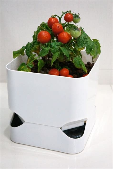 self watering indoor planters cubepot self watering planter