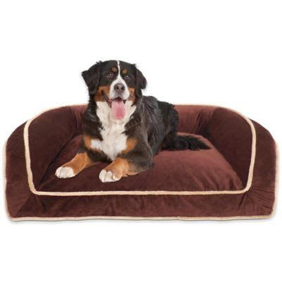 stuft pet bedding stuft pet bedding carefresh complete pet bedding find