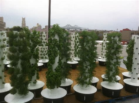 Aeroponic Tower Garden by Sustainable Aeroponic Rooftop Garden Created Above Downtown Rouses Silicon Bayou News