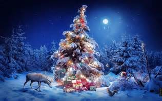 beautiful snowy pictures of christmas trees for greetings happy christmas