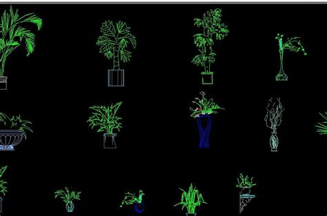 flower design in autocad bonsai tree in pot decoration plants in vase elevation 2d