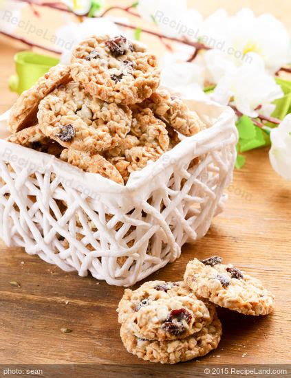 125 Recipes Cookies chewy oatmeal trail mix cookies recipe