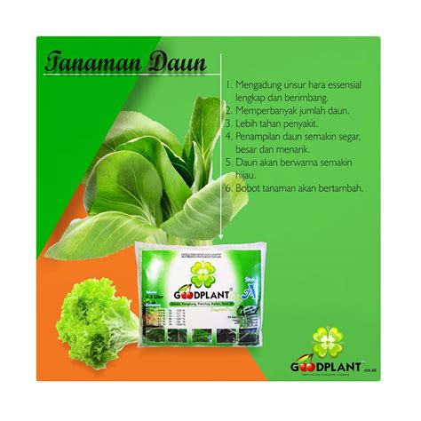 Harga Nutrisi Hidroponik Goodplant jual goodplant nutrisi hidroponik daun 500 ml 3 pcs