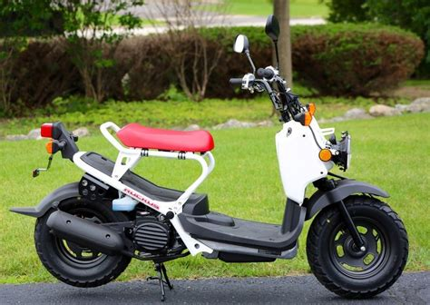 honda zoomer for sale 2015 honda ruckus for sale power sports