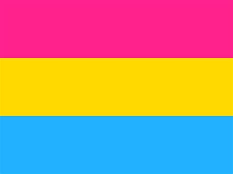 pride flag colors pan pride