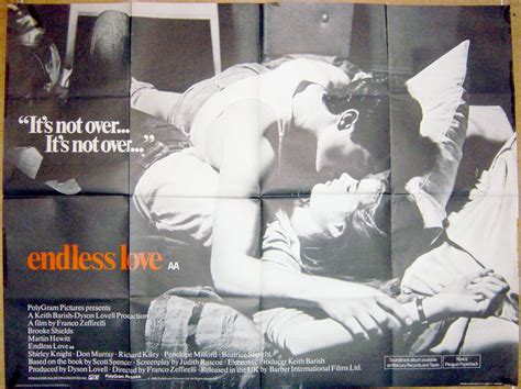 endless love original film endless love original cinema movie poster from