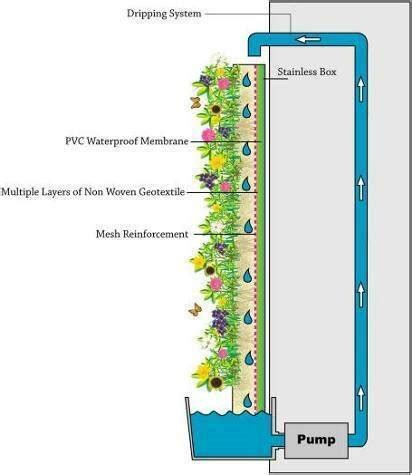 green walls vertical garden ideas and benefits with