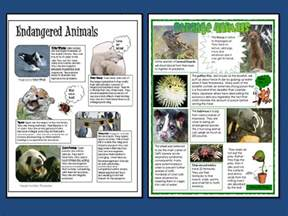 Non Chronological Report Template action endangered animals