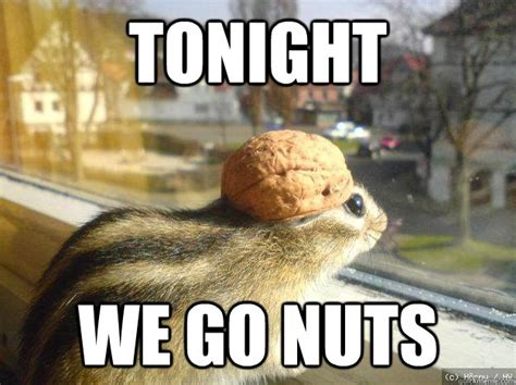 Nuts Meme - it s time to party a roundup of gay events happening in