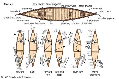 parts of a dragon boat canoeing sport britannica