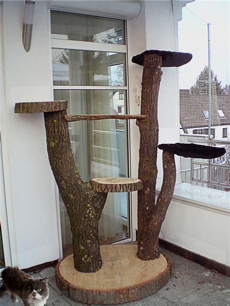 kratzbaum selber bauen aus naturholz kratzbaum naturholz