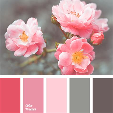pink and grey color scheme pink and gray color palette ideas