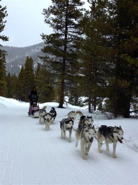 sledding breckenridge sledding with times adventures in breckenridge colorado sled buckets and