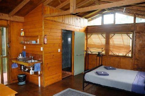 daintree rainforest bungalows daintree rainforest bungalows 2017 prices reviews