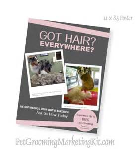 grooming flyers template deshed shed less program poster for http www