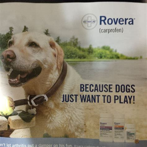 rovera for dogs stuff marks