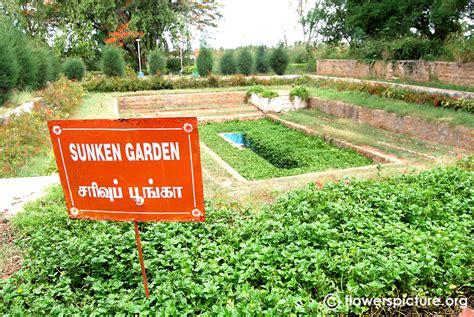 Garden Coimbatore Tamil Nadu Agricultural Botanical Garden Coimbatore