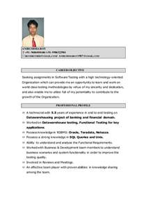 Cover Letter For Software Testing by 100 Cover Letter For Software Testing Embeded Linux