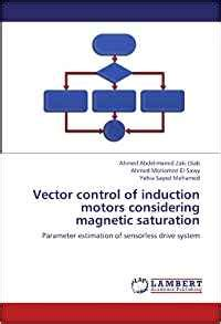 inductor magnetic saturation vector of induction motors considering magnetic saturation parameter estimation of