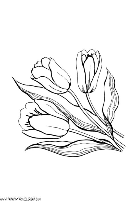 imagenes para pintar tulipanes free cempasuchil flower coloring pages