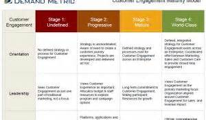 customer engagement maturity assessment demand metric