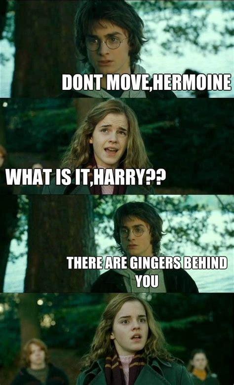Hermione Memes - meme harry potter hermione meme horny potter meme