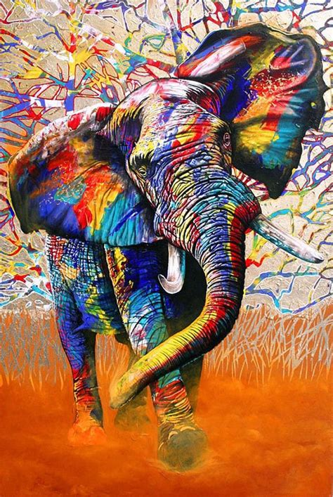 colors of africa colours ed 1 of 299 by graeme stevenson